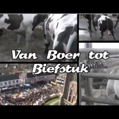 Van Boer Tot Biefstuk
